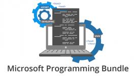 Microsoft Programming Bundle