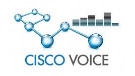 Cisco Voice (CCNA Voice)