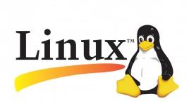 CompTIA LX0-101 & LX0-102 CompTIA Linux+