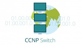 Cisco 642-813  Implementing Cisco IP Switched Networks - SWITCH